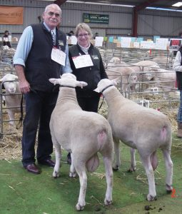 Sheepvention-2010-090728-090576